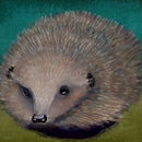 winter-hedgehog