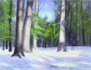 winter-in-forest