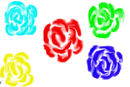 colour-roses