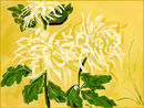 chrysanthemum-a-la-chi