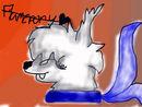 an-artic-wolf